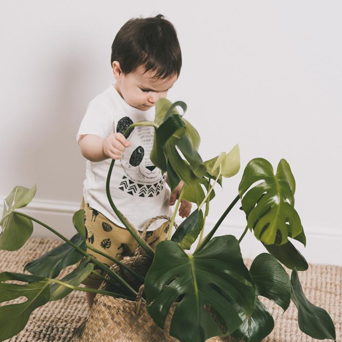 Calcetines nórdicos para niños Dear Mini